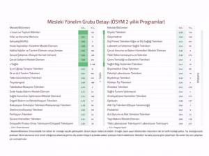 Mesleki Yönelim Grubu Detayı (ÖSYM 2 yıllık Programlar)